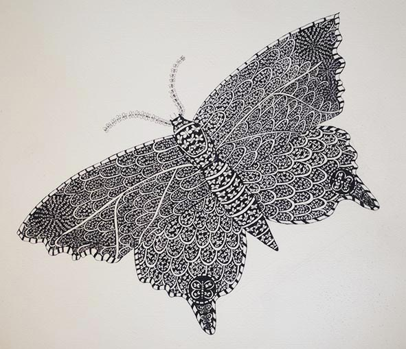 butterfly fractals