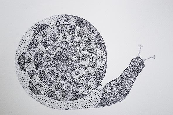 snail pen and ink flowers fractals